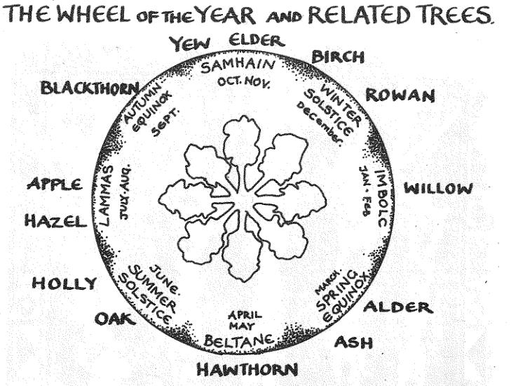 Tree Ogham Image